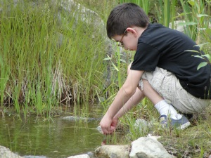 Catching Water Creatures